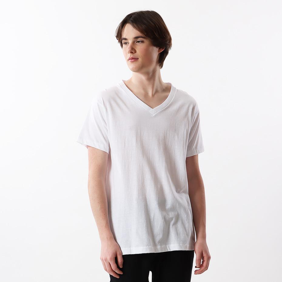 【3枚組】アオラベルVネックTシャツ 17FW 青パック ヘインズ(HM2125G)
