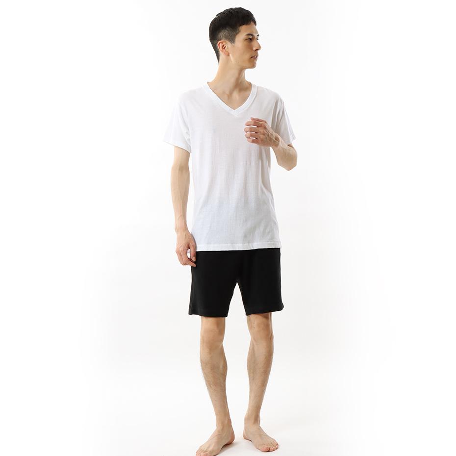 【3枚組】アオラベルVネックTシャツ 18SS 青パック ヘインズ(HM2125G)