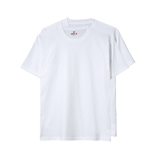 【2枚組】ビーフィーTシャツ 19SS BEEFY-T ヘインズ(H5180-2)