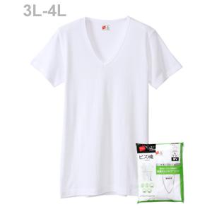 大きいサイズ 【2枚組】ビズ魂 VネックTシャツ 18FW 魂シリーズ ヘインズ(HM1-M702)