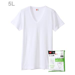 大きいサイズ 【2枚組】ビズ魂 VネックTシャツ 20FW 魂シリーズ ヘインズ(HM1-M702)