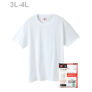 大きいサイズ【2枚組】ビジカジ魂 クルーネックTシャツ 18FW 【秋冬新作】魂シリーズ ヘインズ(HM1EN701K)