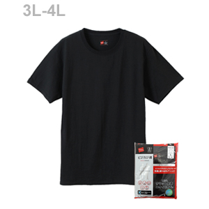 大きいサイズ【2枚組】ビジカジ魂 クルーネックTシャツ 20SS 魂シリーズ ヘインズ(HM1EN701K)